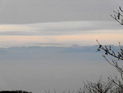 富士山見えた~
