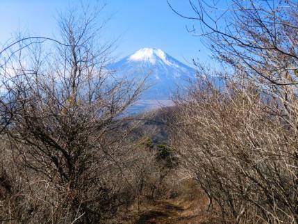 さらに富士山に向かって