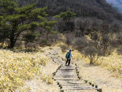 方向は富士山に向かってます