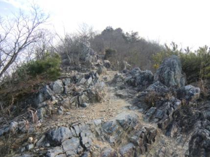 大坊山へ登り返す