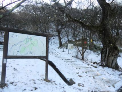 荒山高原登山口の雪はこんな感じで