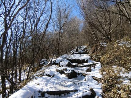 荒山高原から鍋割山へ