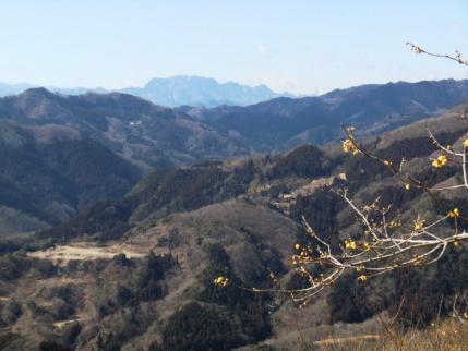 両神山です