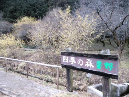 四季の森星野入口