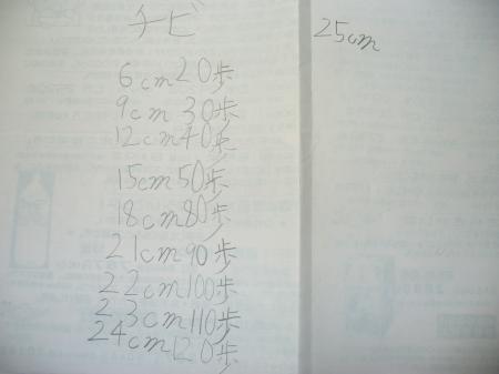 2m21 (3)
