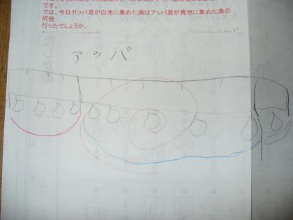5m95+(2)_convert_20091217094452.jpg
