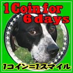 1coinfor6days-thumbnail2.jpg