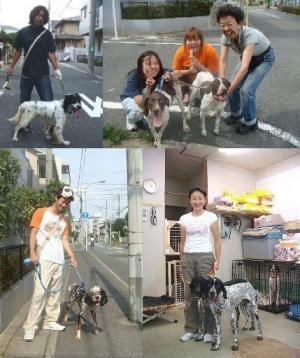 お散歩_convert_20100112103134