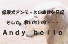 アンディ2