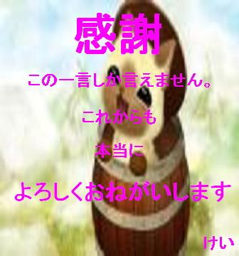 44e7a1643adbe690_20100124001606.jpg
