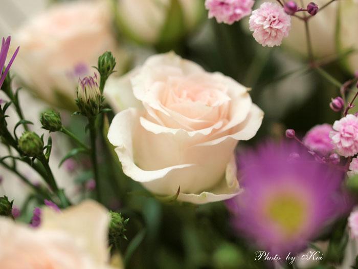 頂き物のお花♪
