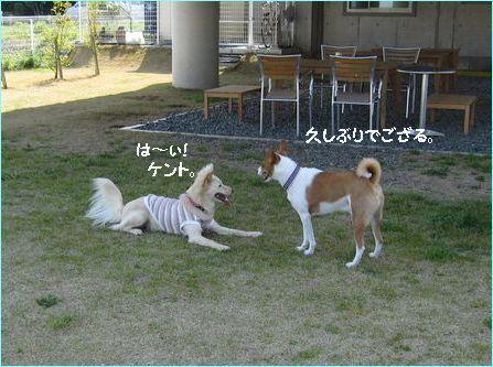 軽井沢以来かな?