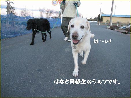 また散歩しようね。