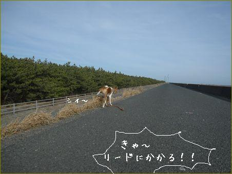 日本中の元気がなくなっちゃう気がします。