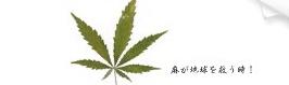 麻が地球を救う時_bumper_sticker-p128126639997074985vpeh_325