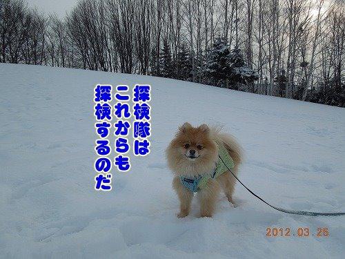 20120324_13.jpg