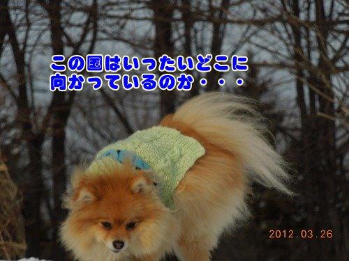 2012032603.jpg