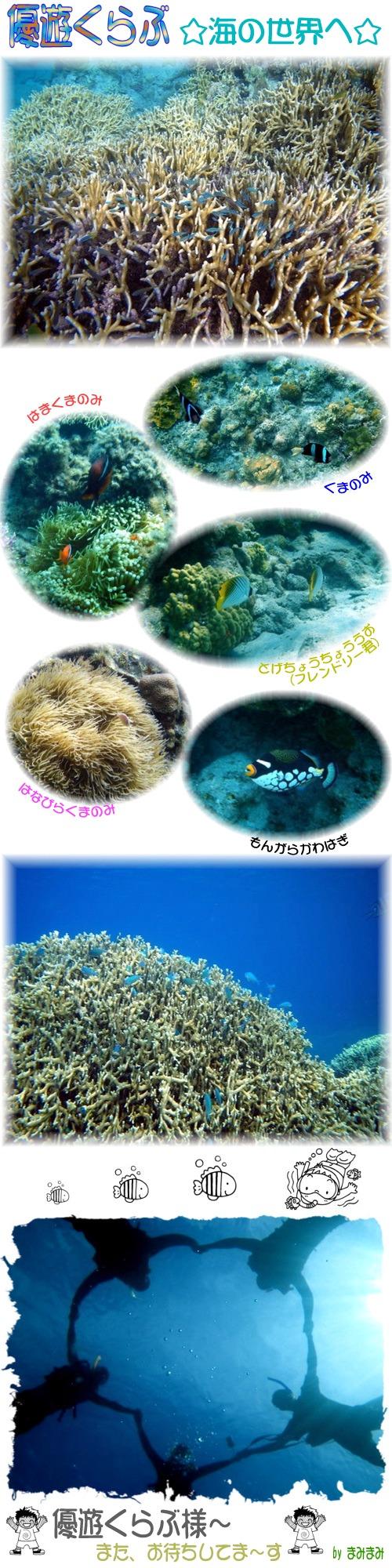 海の世界へ