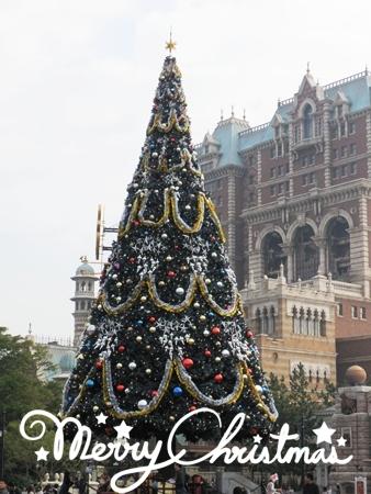 Christmas2011 4