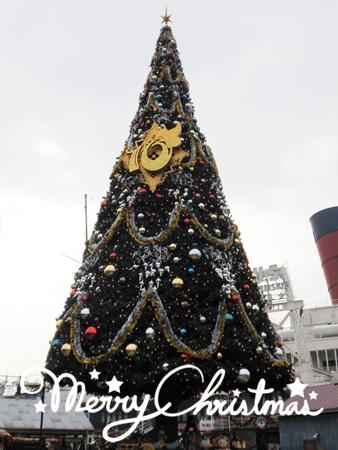Christmas2011 5