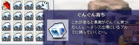 Maple100619_130053.jpg