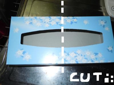 DSCN4989_convert_20110118102539 mudai