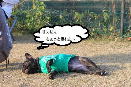 IMG_3816.jpg