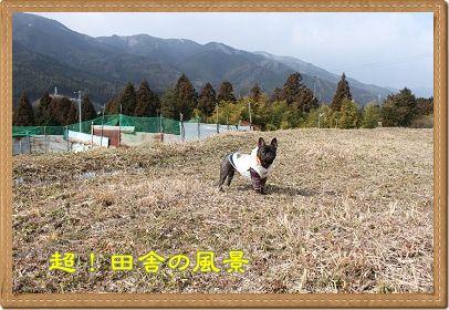 IMG_5625.jpg