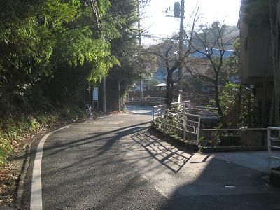 20100119_006.jpg