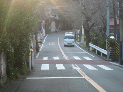 20100119_008.jpg