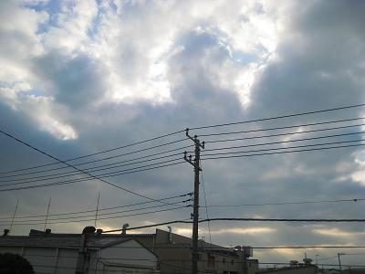 20100308_030.jpg