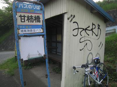20100817_060.jpg