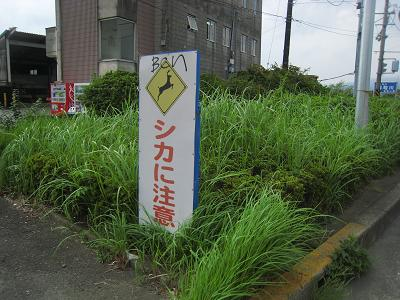 20101012_012.jpg