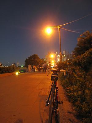 20101101_039.jpg