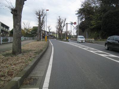 20101216_013.jpg