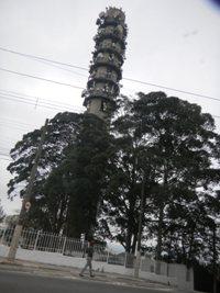 DSCN5520.jpg