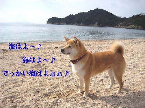 IMG_1402aa.jpg