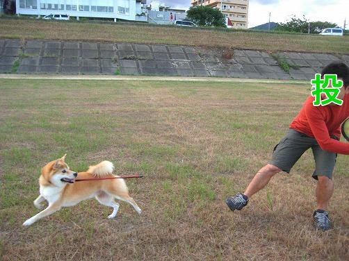IMG_akinokawara1a_20100924194252.jpg