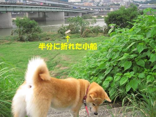 IMG_kobune.jpg