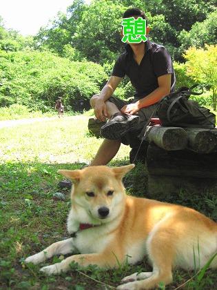 IMG_taishaku2a_20100817103753.jpg