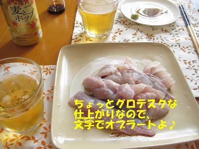 IMG_turi7.jpg