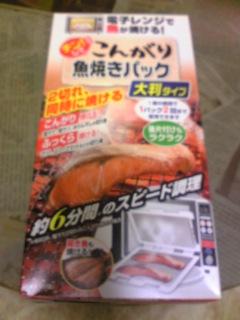 魚①20100711