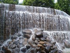 新宿中央公園①