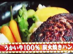 うかい牛100 炭火焼きハンバーグ