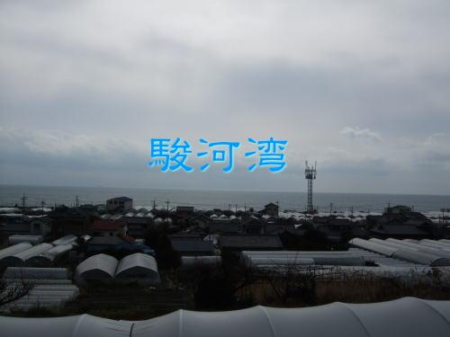 2012いちご008