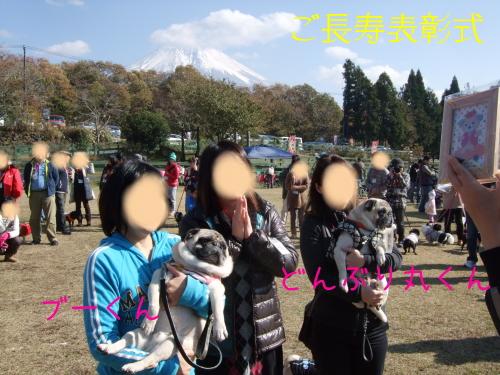 20131117004.jpg