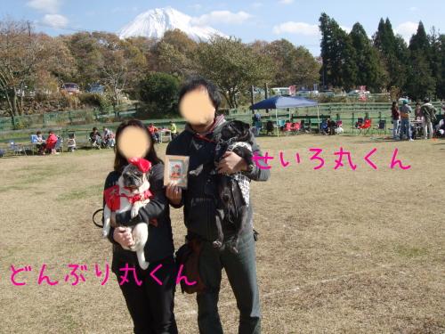 20131117005.jpg