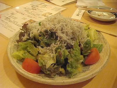 sinnkawa201001c.jpg