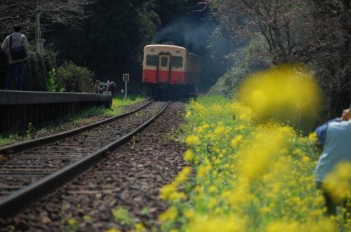 小湊鐵道 飯給駅