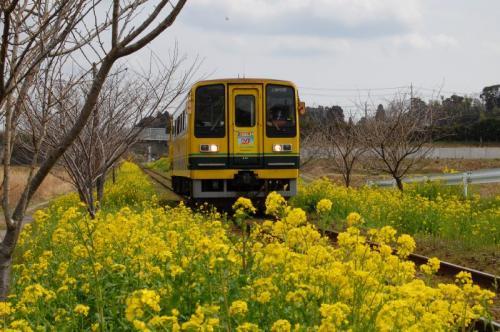 いすみ鉄道 2009/3/13 城見ヶ丘駅